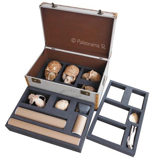 Baules maletas didacticas paleorama arqueología virtual